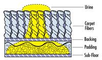 Pet Urine Spreading Diagram